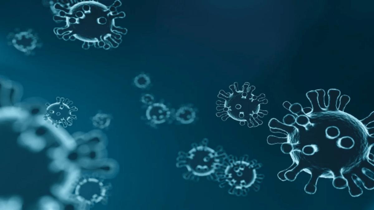 Coronavirus – A Patent Update on the Outbreak